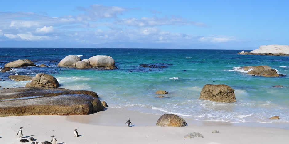 Città del Capo - Boulders Beach